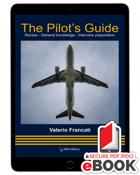 The Pilot's Guide - eBook